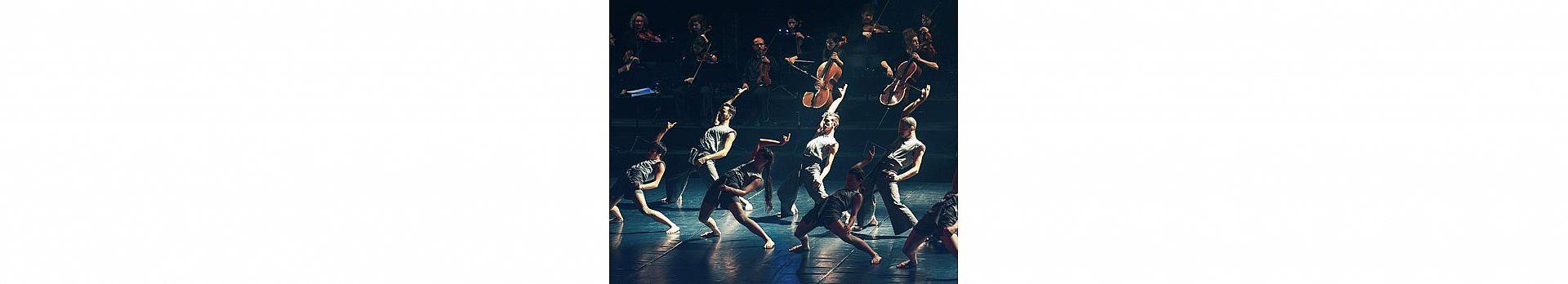 ורטיגו ותזמורת המהפכה