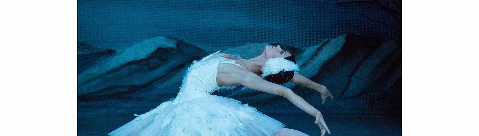 אגם הברבורים באופרה הישראלית