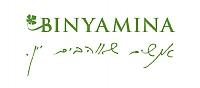 לוגו בנימינה חדש