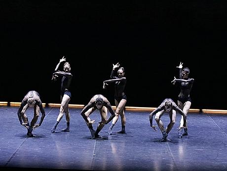 Dresden-Frankfurt Dance Company