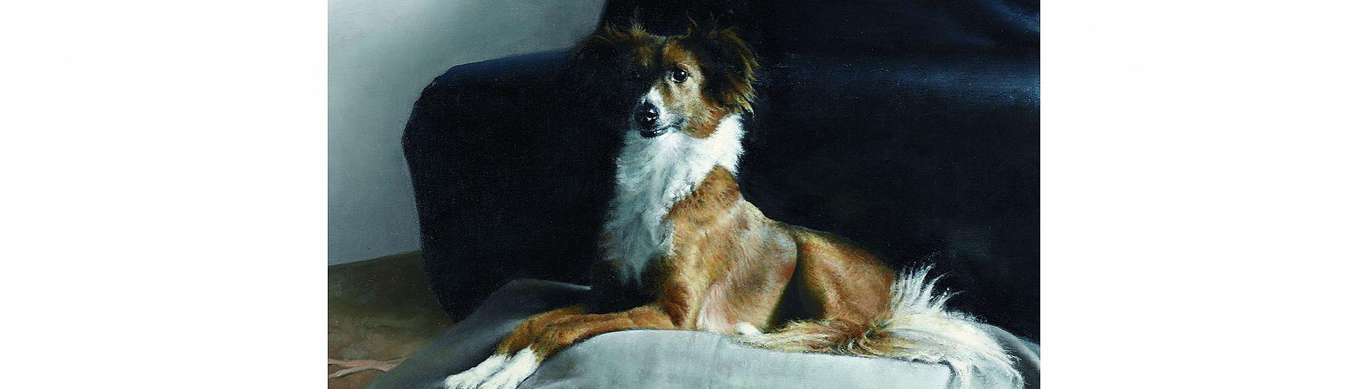 כלבים וחתולים בביצועים אופראים