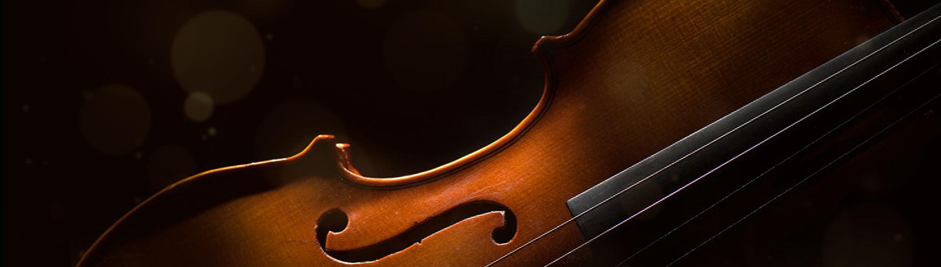 תזמורת הגליל הקאמרית